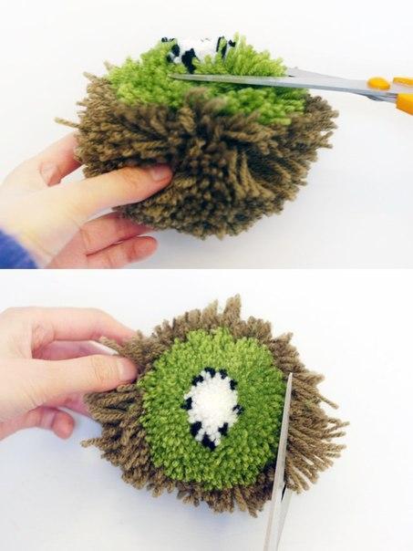 pompon kiwi